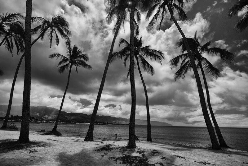 Darren Sethe - North Shore, Oahu