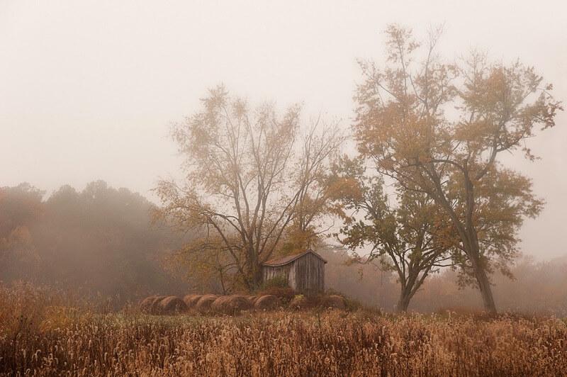 Jeff Weese - November Fog