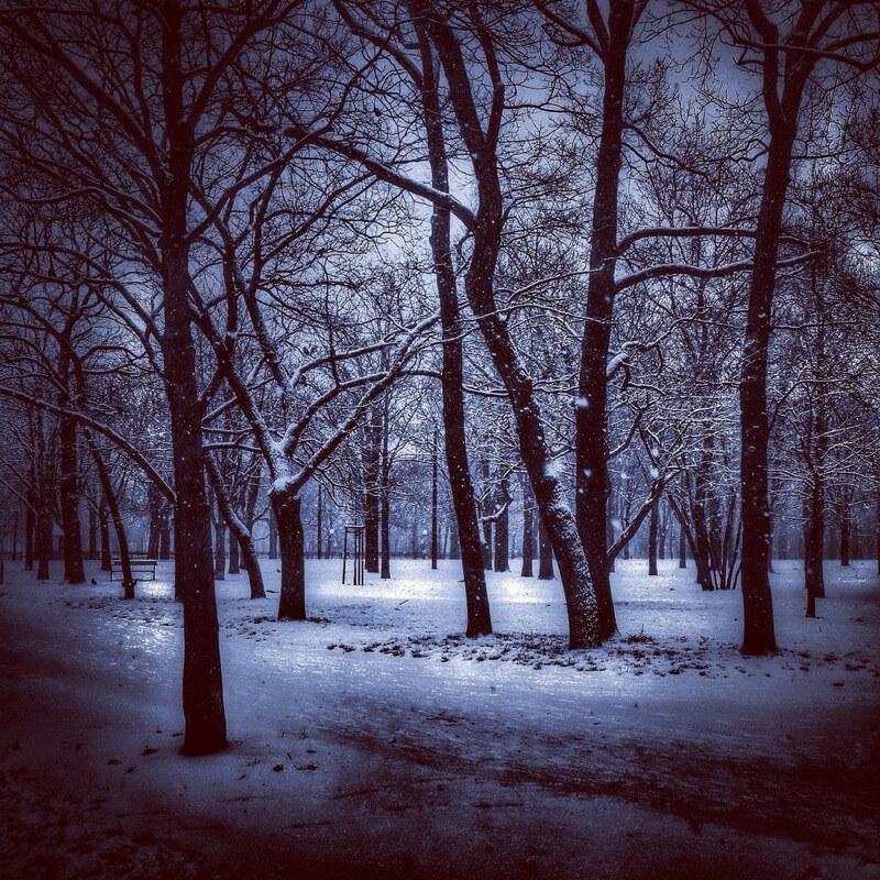 Melinda Szente - Winter in the park