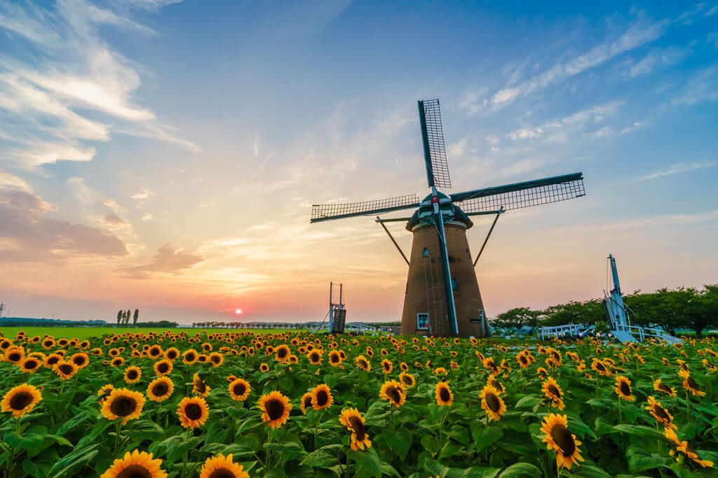 30 wonderful photos of windmills from around the world