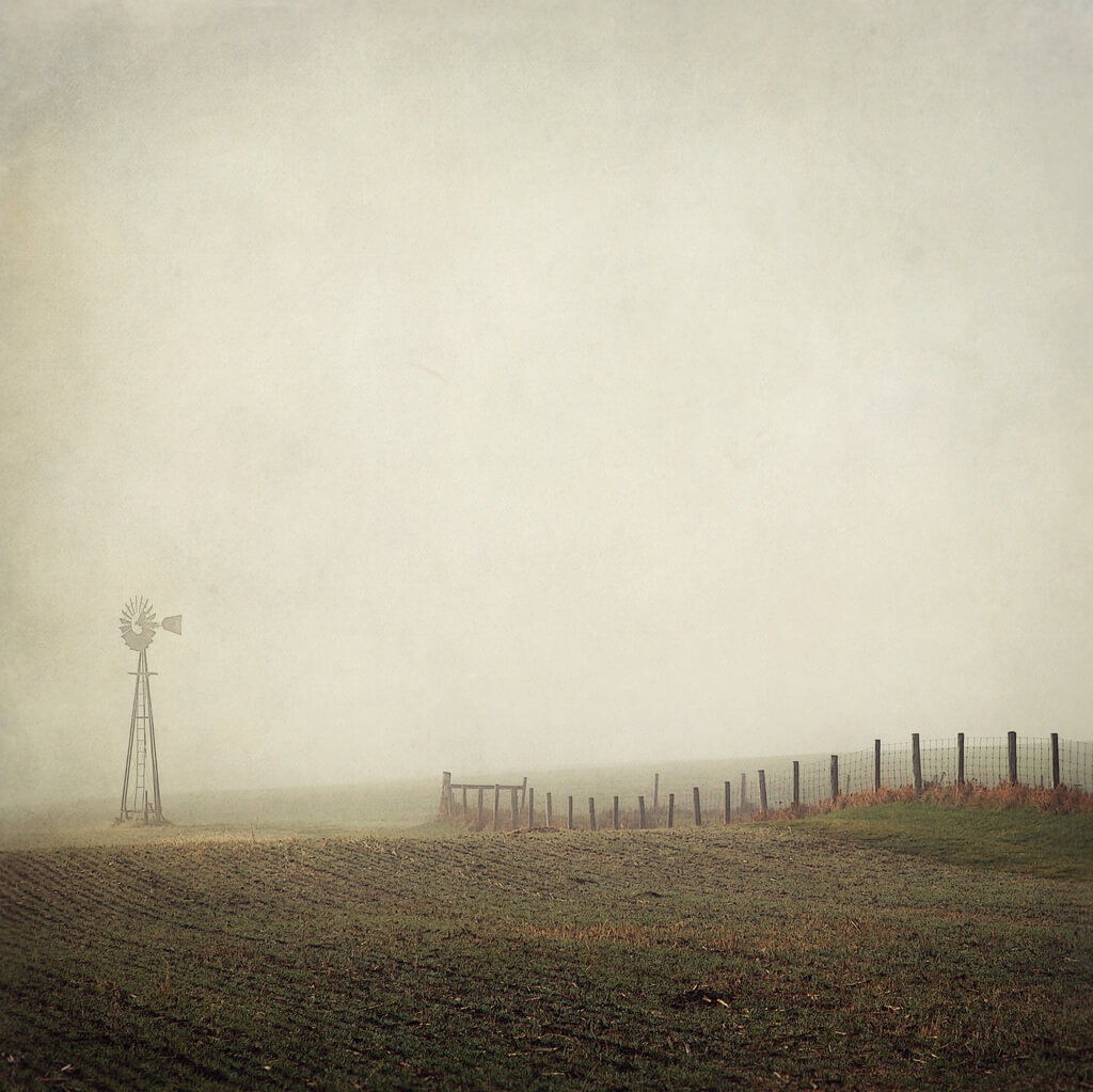 Robb North - morning mist windmill