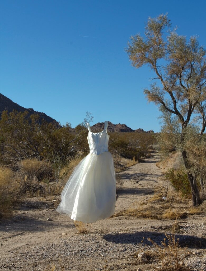Desert Floating Dress