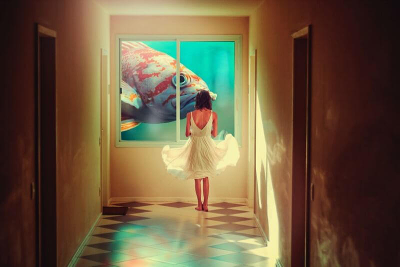 Isabella Mariana - Dreamscape