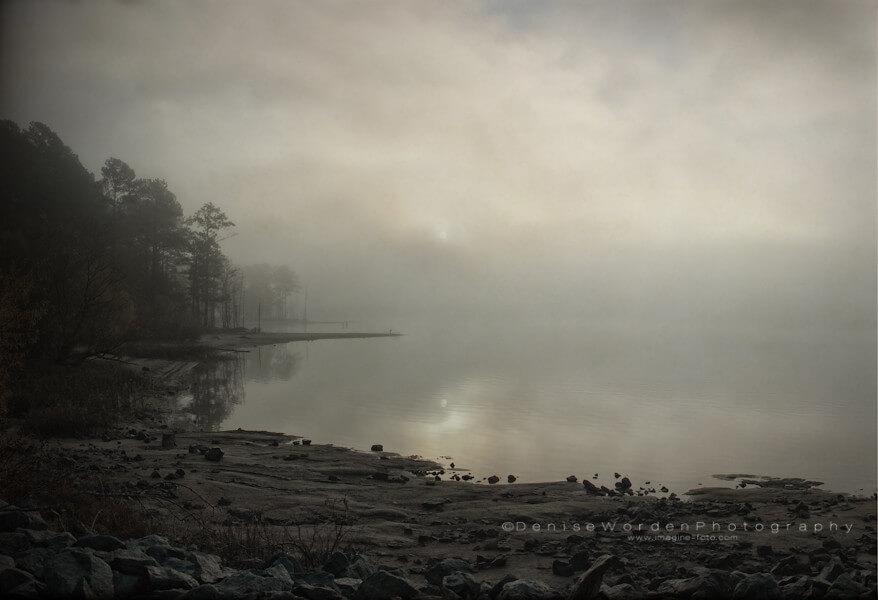Denise Worden - Lake Fog