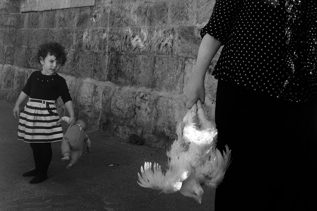 ilan Ben yehuda woman holding chicken