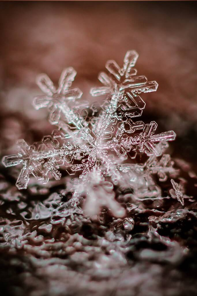 snowflake texture