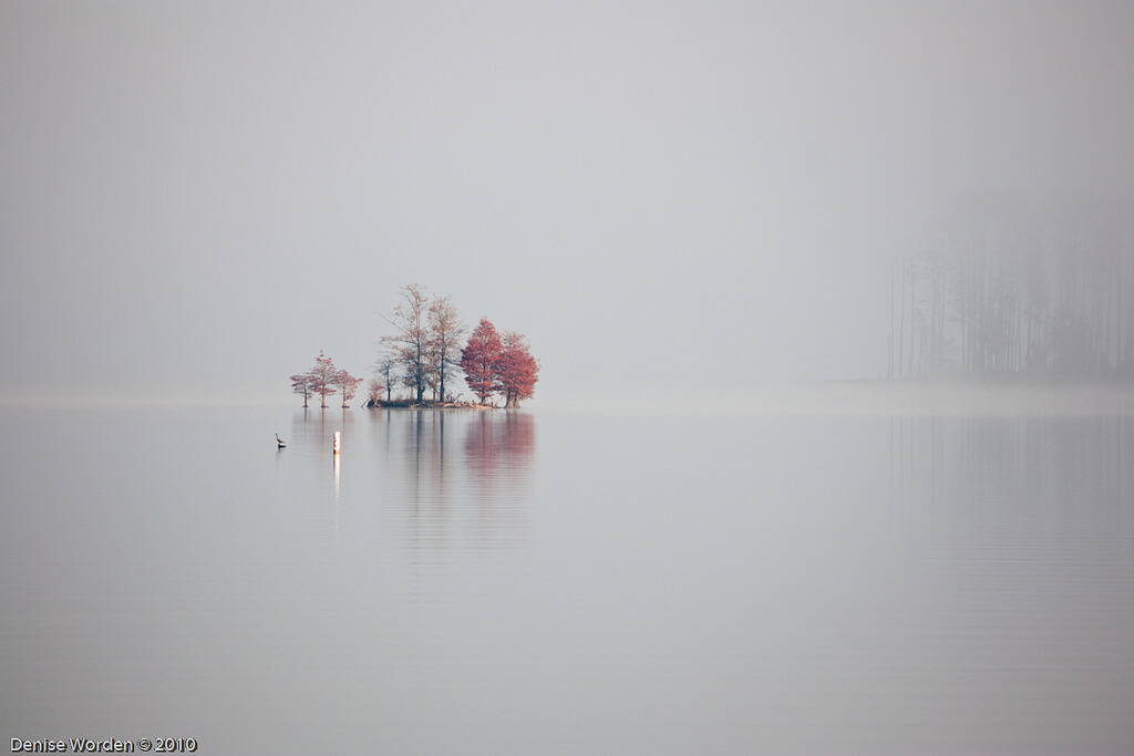 Denise Worden misty lake