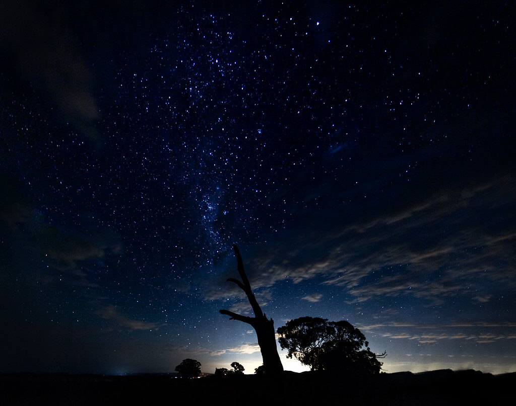 Nerissa Turner - night sky silhouette
