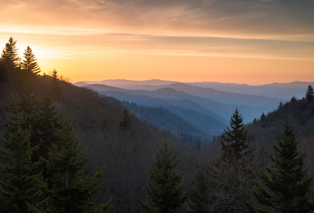 Johan Hakansson Photography - Smoky Mountain Gold