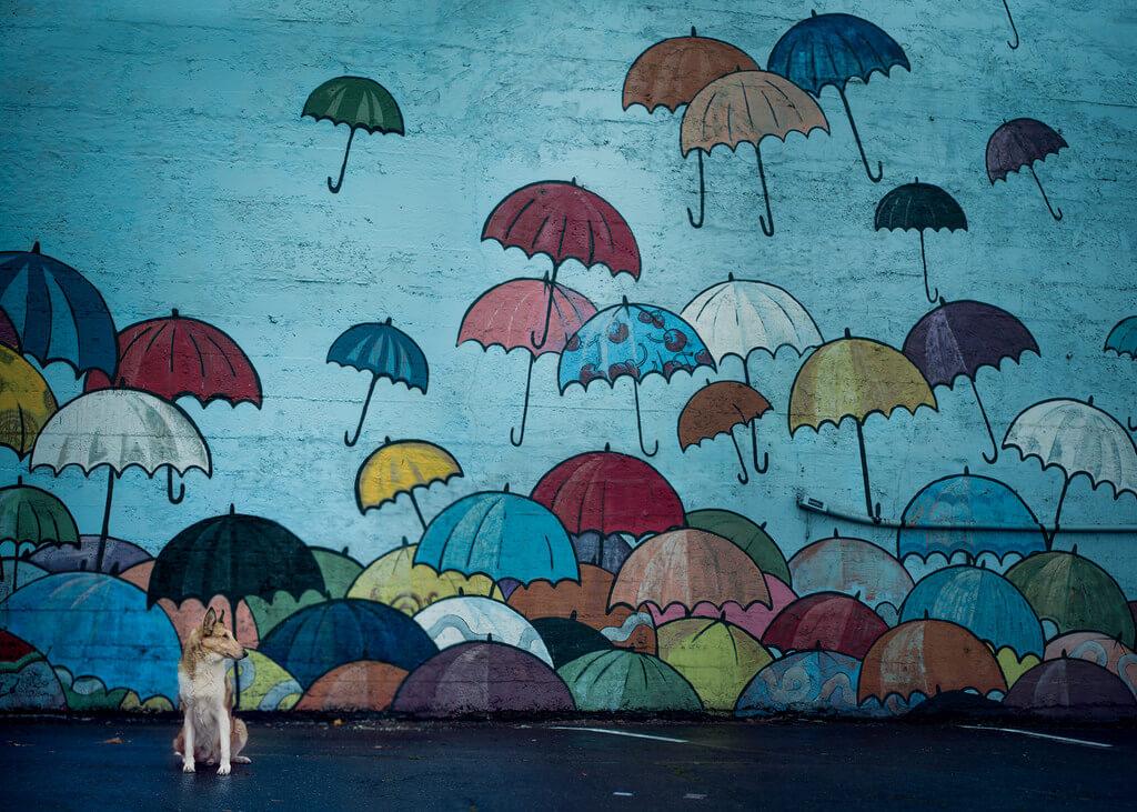 Katie McLellan umbrella mural
