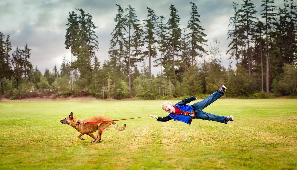 Katie McLellan dog pulling leash