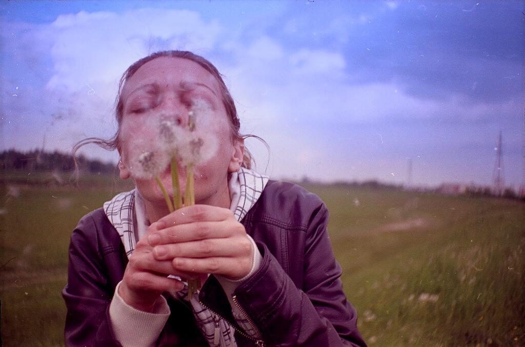 hnt6581 - blowing dandelions