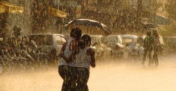 Otacílio Rodrigues - Golden rain