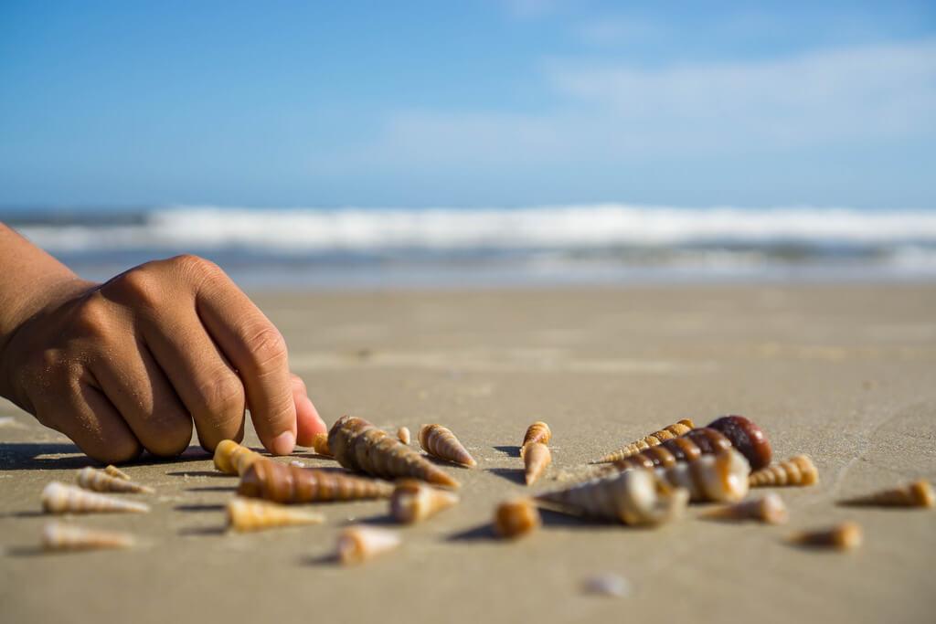 Marco Verch - Muscheln werden in einem Kreis am Strand in Vung Tau, Vietnam gelegt
