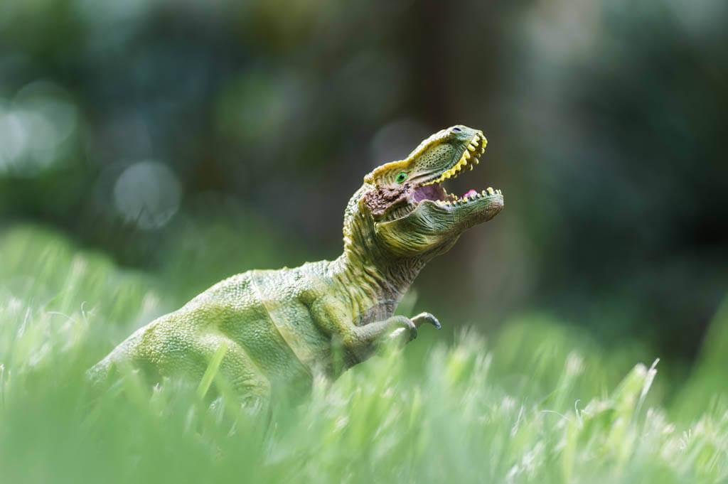 Jette Baltzer - Jurassic Park