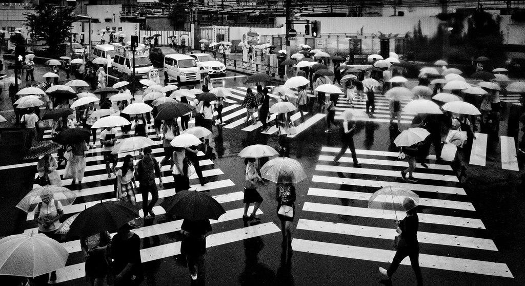 Shirren Lim - Tokyo crosswalk
