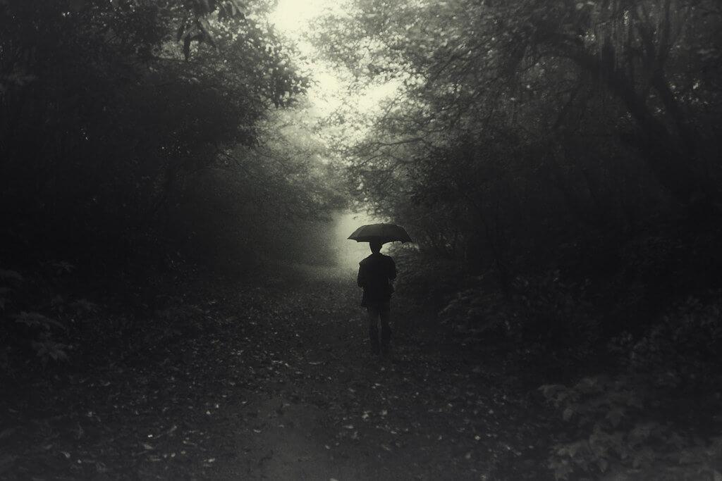 swapnil deshpande - forest walk