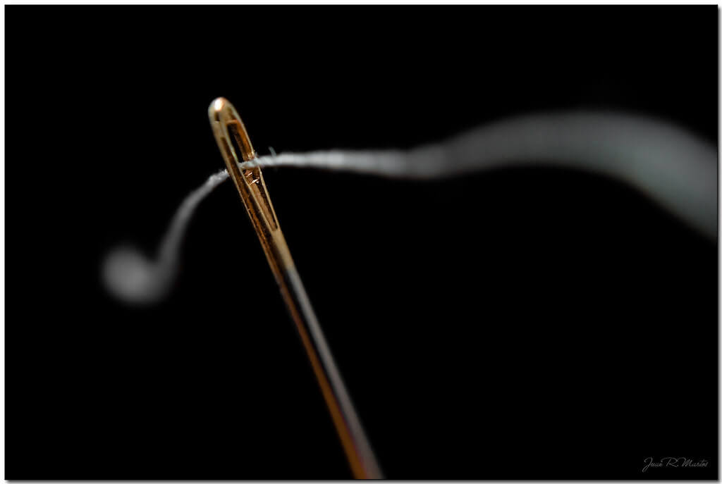 Juan Ramón Martos - needle and thread macro