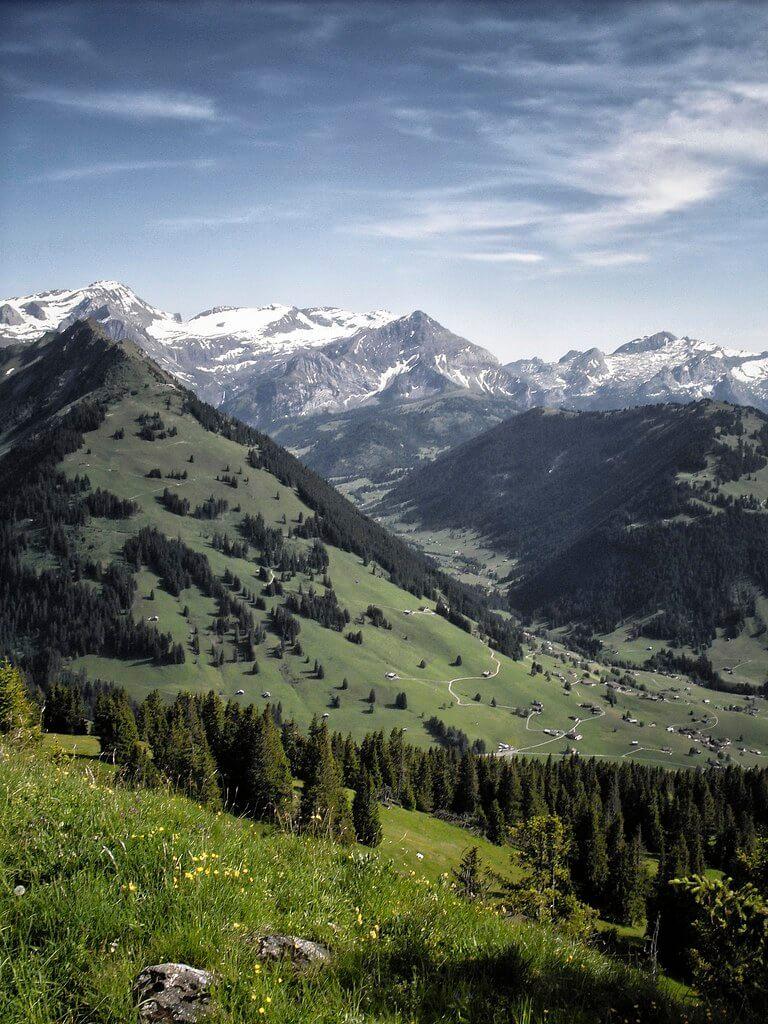 Linus Wärn - How Green Was My Valley