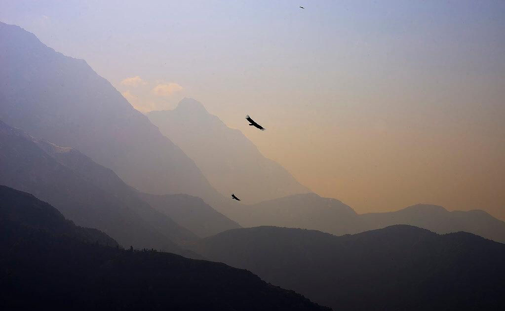 Nimit Nigam - Triund Hills India