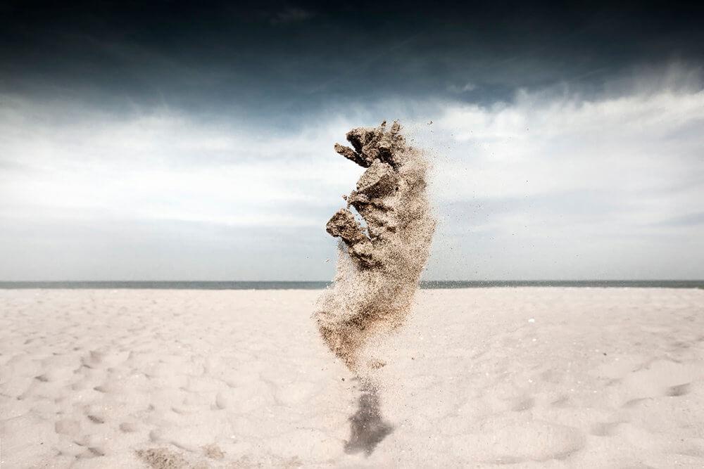 Sand Creatures II - Lizard