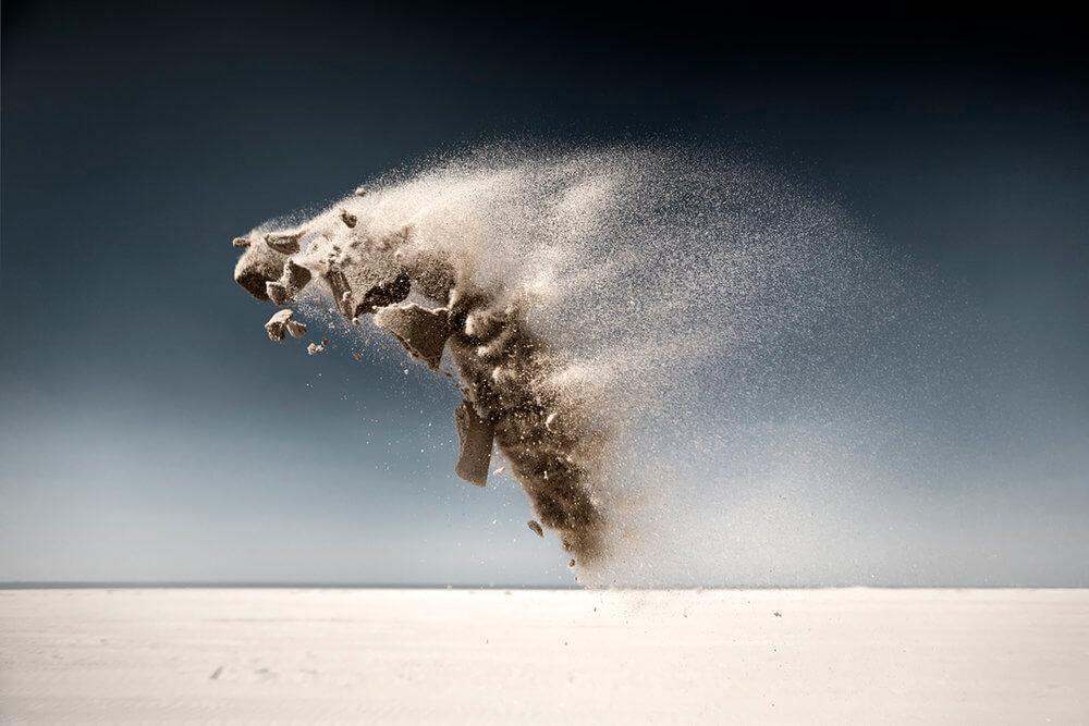 Sand Creatures II - Moth