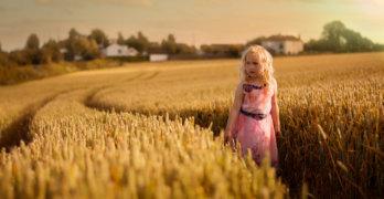 Malgorzata Kapustka - ... golden hills ...