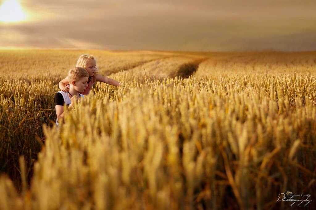 Malgorzata Kapustka - wheat field portrait