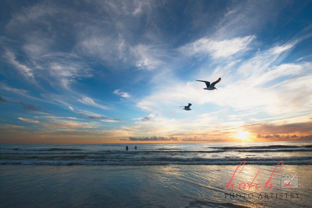 Eric Hatch - Sunset, Siesta Key
