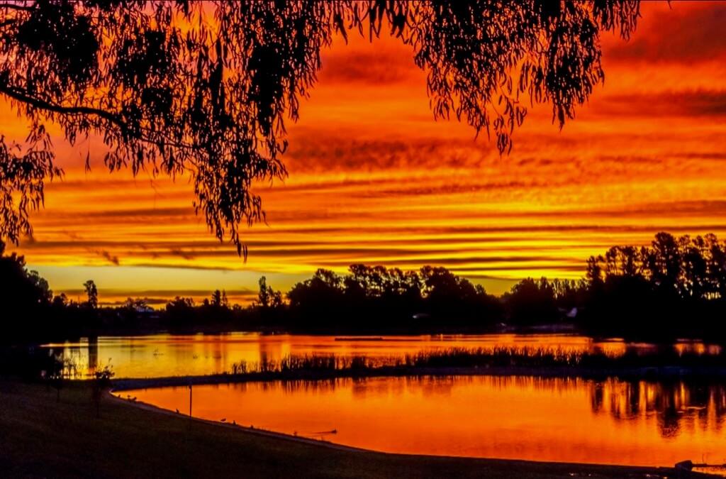 Terence Rutter - Sunset at Beechworth, Victoria, Australia