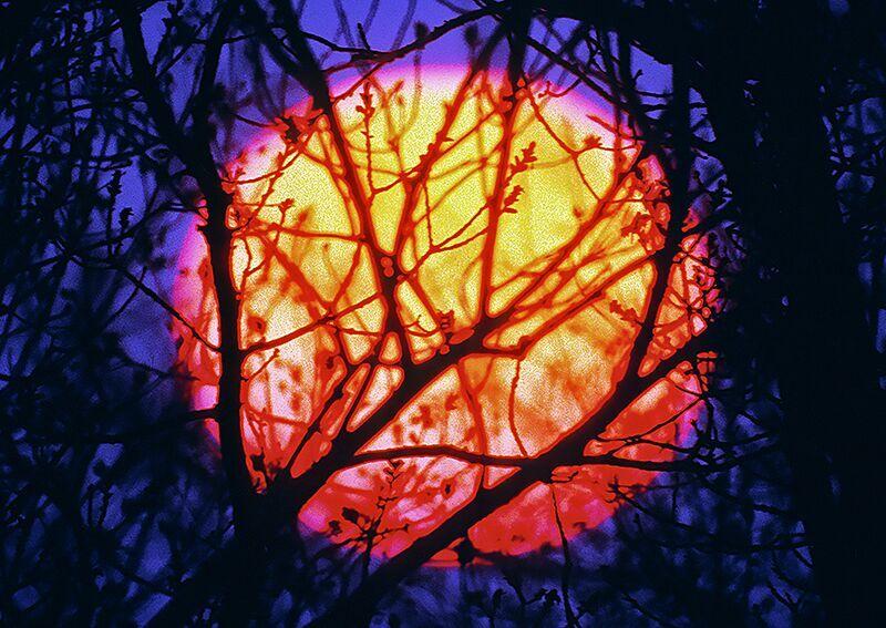 Warren Krupsaw sunset