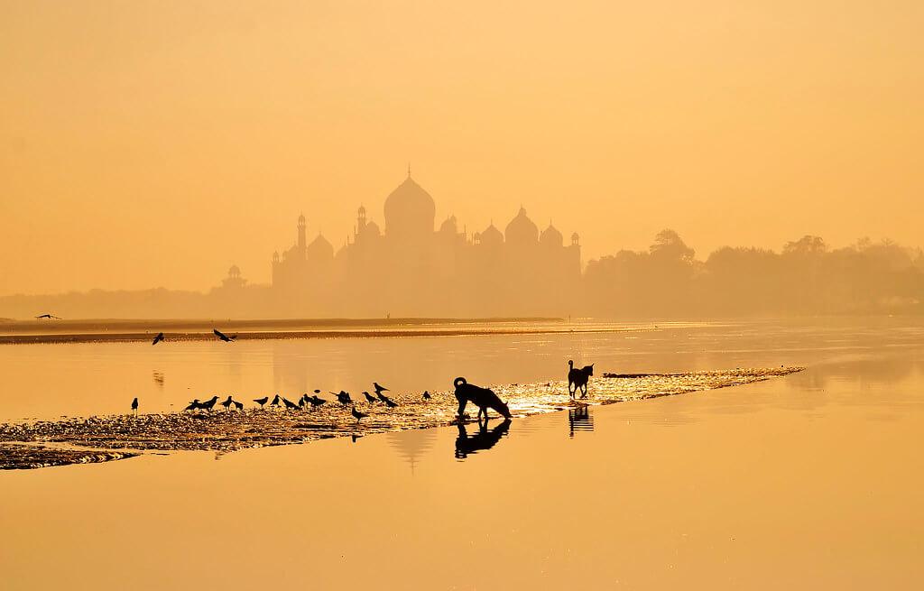 Nimit Nigam - Taj Mahal