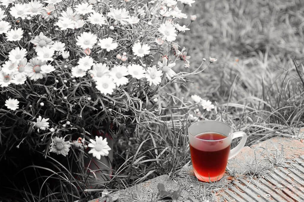khaled eyes - tea and flowers