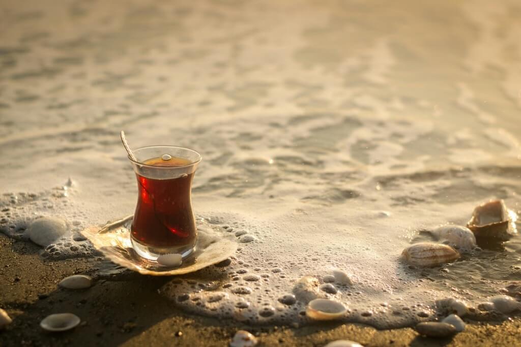 Zeynep Ugurdag