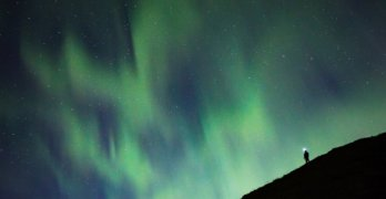 Grant Ordelheide - A person enjoys the northern lights over Denali National Park in Alaska.