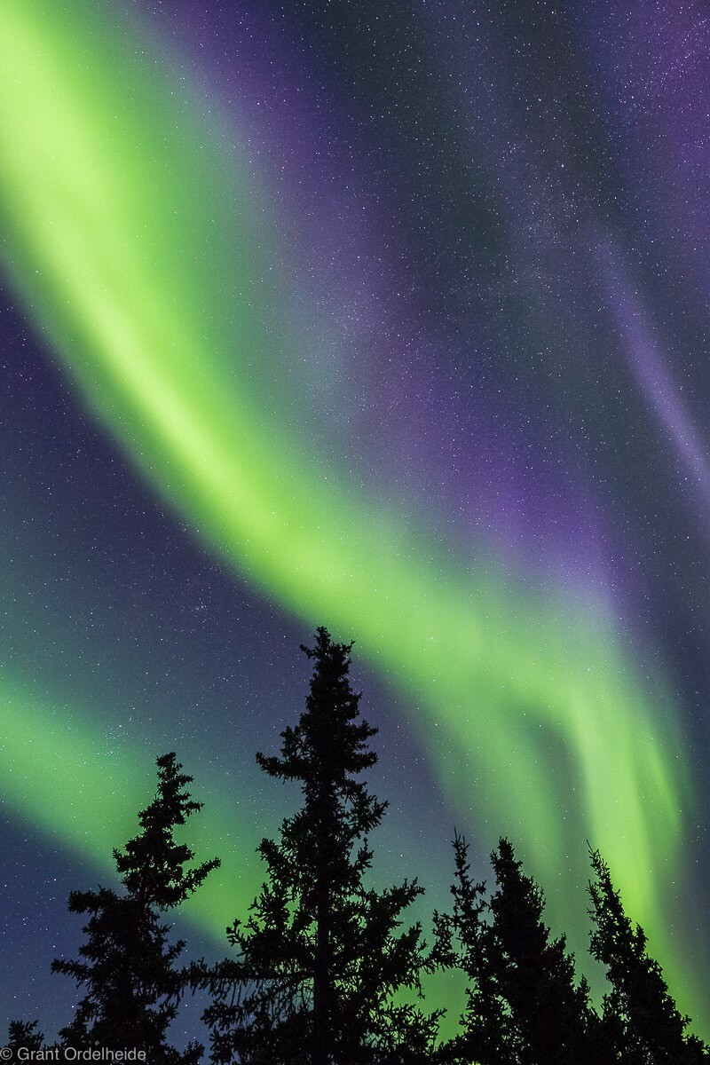 Grant Ordelheide - The northern lights over Alaska's Denali National Park