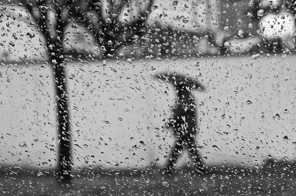 Ömer Diyelim - Rainy Windows