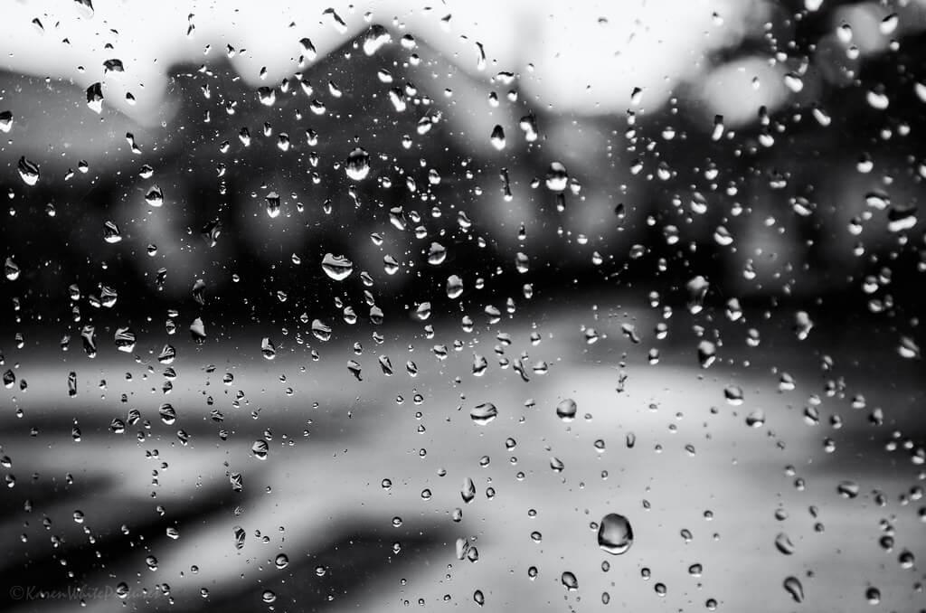 Karen White - rainy day