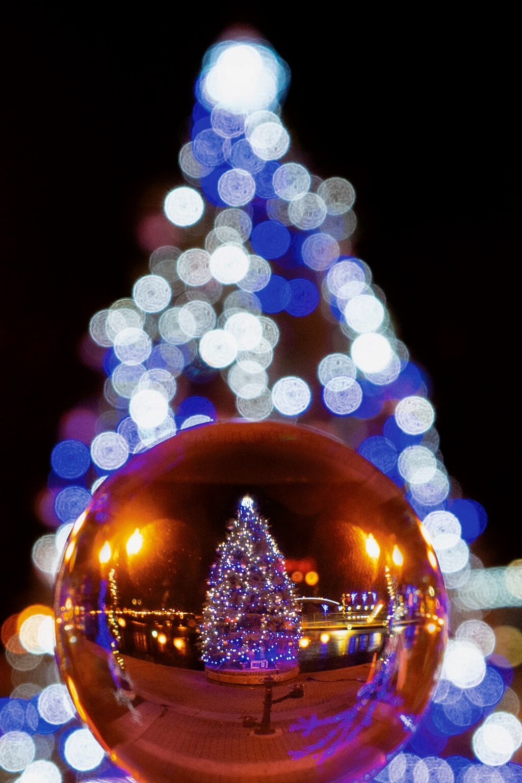 Chris Trafford - bokeh Christmas tree