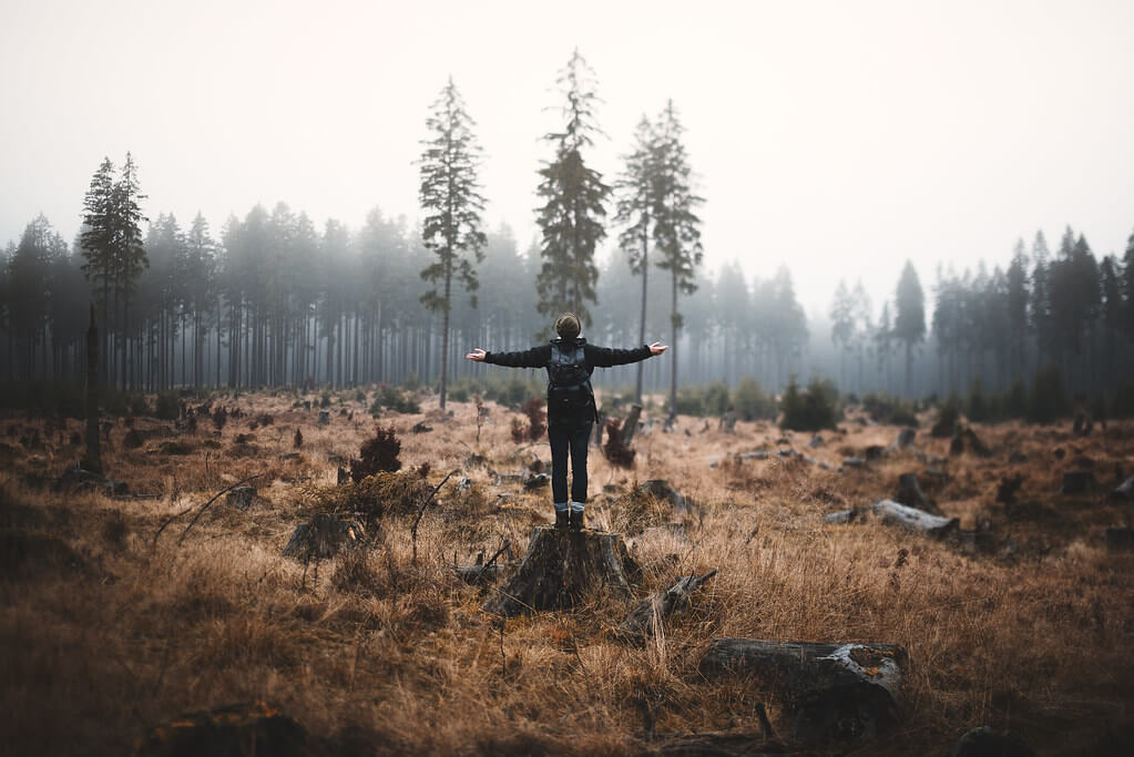 Steven Ritzer - autumn portrait