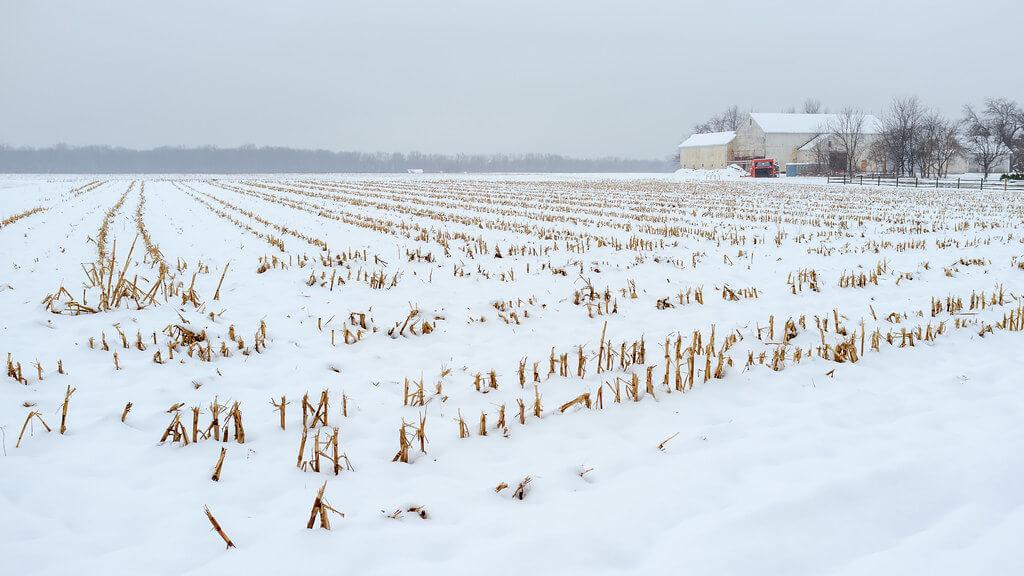 Andy Farmer - Winter Farm