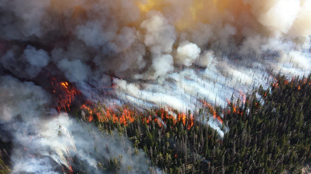 NPS Climate Change Response - Wildfire