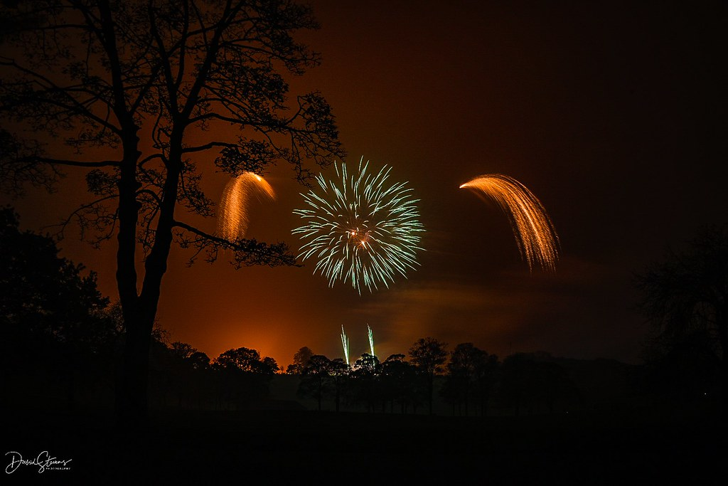 Dave Stevens - Bonfire night Roundhay Park