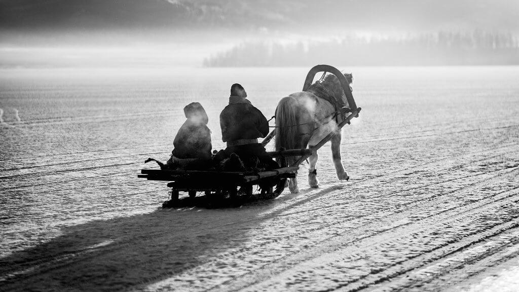 Shirren Lim - horse sleighing