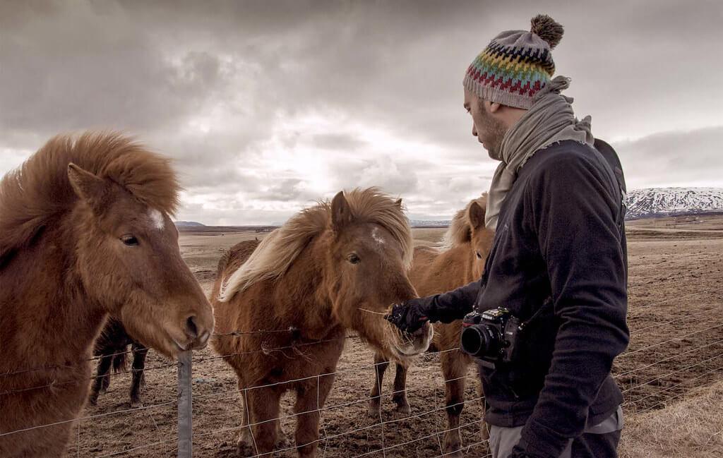 Fernando - feeding horses