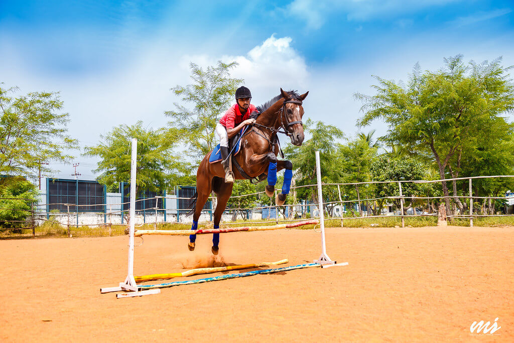 Vijai Balaiah - Polo and Riding Club, Kelambakkam, Tamilnadu, India