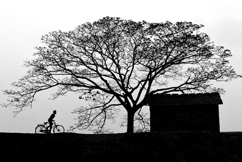 Chinmoy Biswas - Bicycle
