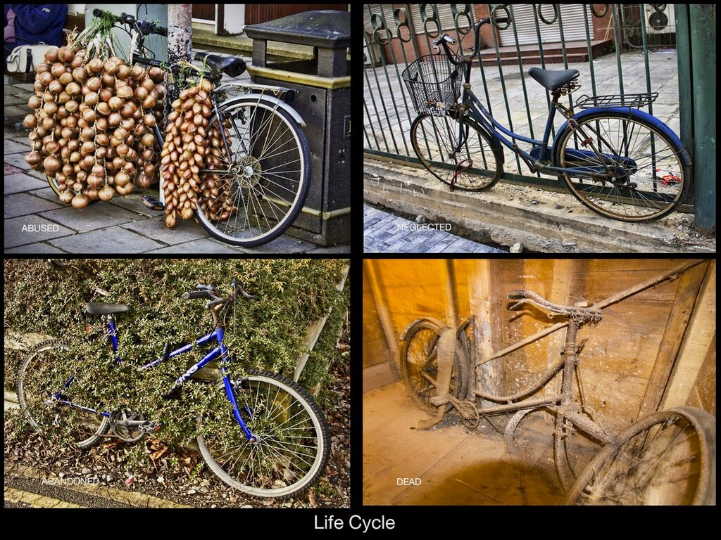 Michael Hawley - Life Cycle of Bicycles