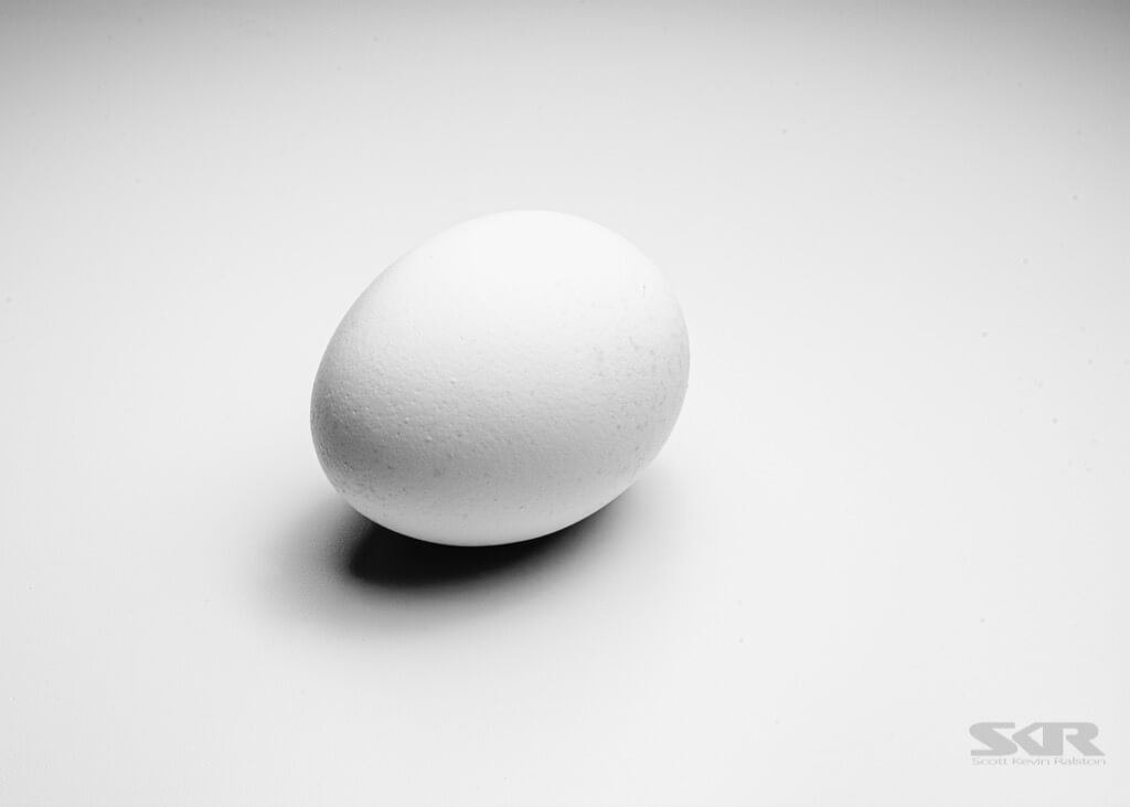 Scott Ralston - egg