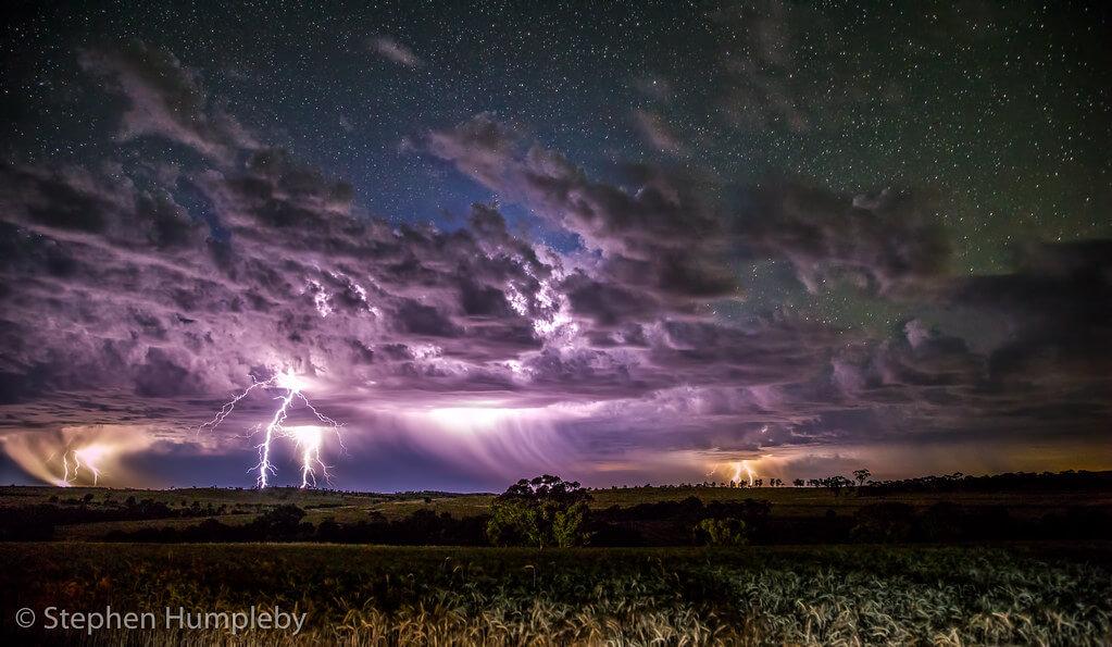 Stephen Humpleby - Avondale Discovery Farm Lightning